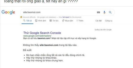 Tìm hiểu nguyên nhân trang baomoi.com mất index trên Google