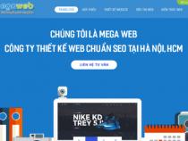 Tổng hợp social entity của dự án công ty Megaweb