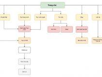 Tầm quan trọng của xây dựng cấu trúc website trong SEO